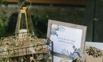 cadeaux-invites-mariage-tillandsias-airplant