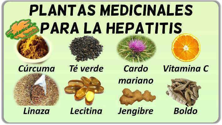 Cuidar el hígado