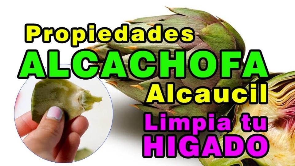 Cuidar tu hígado con alcachofa o alcaucil