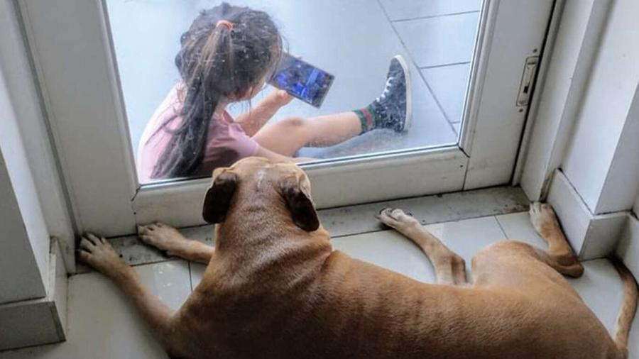 cane bambina01