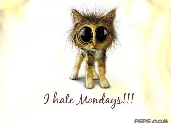 odio il lunedì