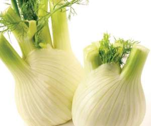 Recipe: Fennel soup