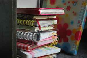 Past diaries/journals
