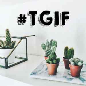 TGIF: Welcome to the weekend 39