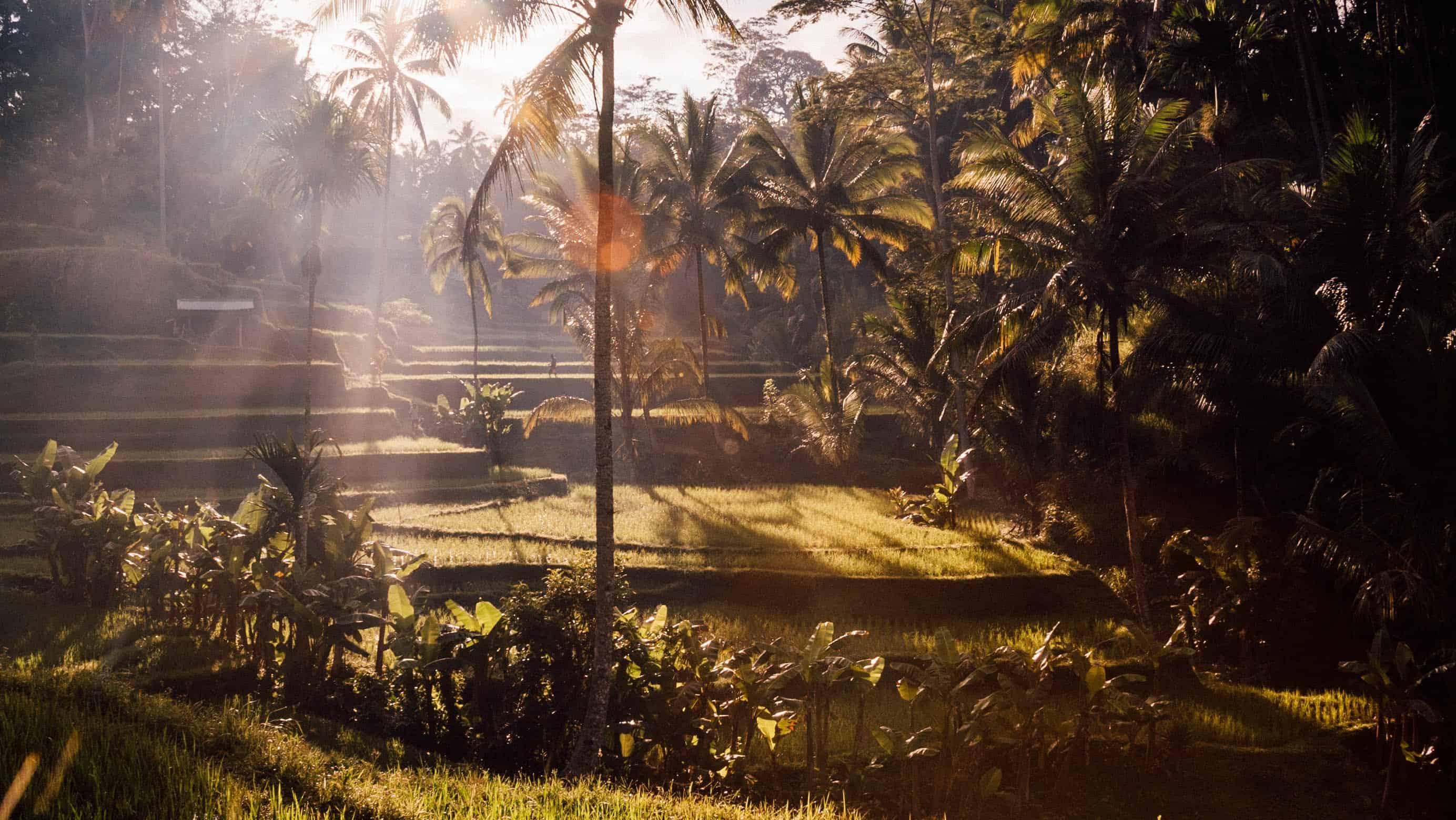 Vakantie voorpret: mijn reis naar Bali (met tips & korting voor je eigen reis)!