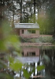 7 x De leukste tiny houses in België
