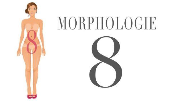 Morphologie en 8