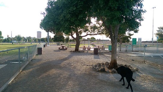 Dog Fancier Park, Las Vegas, Eastside Dog Park