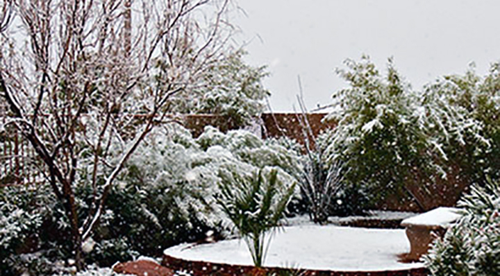 summerlin_snow_700_1545070454816.jpg