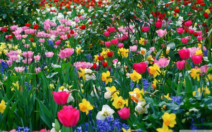 5.16- Spring 8