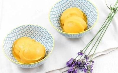 SORBET MANGUE sans gluten, avec ou sans sucre, sans œuf