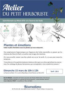 Atelier : Plantes & Emotions