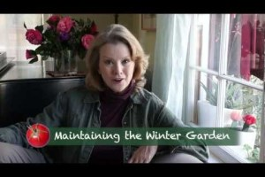 Winter Garden Maintenance