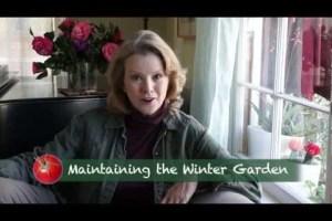 Winter Garden Maintenance