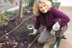 Winter Garden Fun and Maintenance – Episode 23