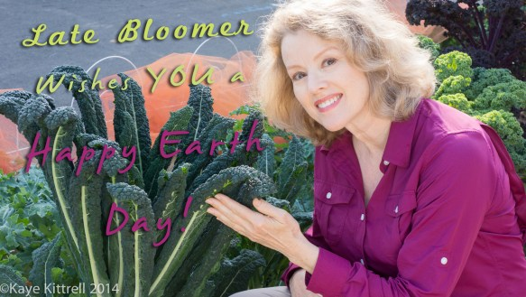 Late Bloomer is Two Today!-Kaye