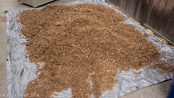 Make it a Learning Experience-shavings