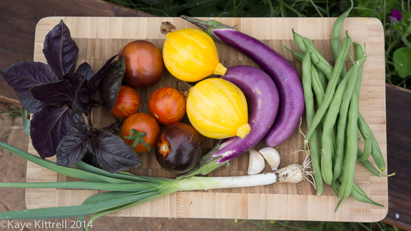 My Easy Ratatouille!-veggies