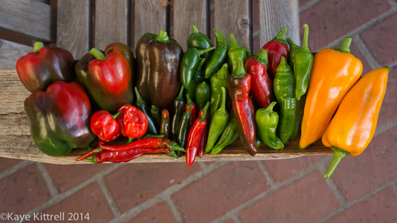 Heat Wave Pushes Summer Veggies into Fall