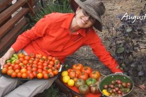 Growing Heirloom Tomatoes Part 4!