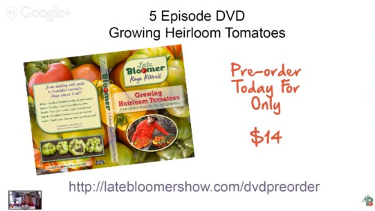 Reflecting on My First Webcast - DVD Preorder