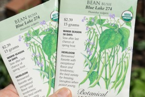 Order Blue Lake Heirloom Bean Seeds