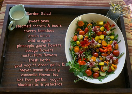 Extreme Garden Makeover Day 1 - salad recipe