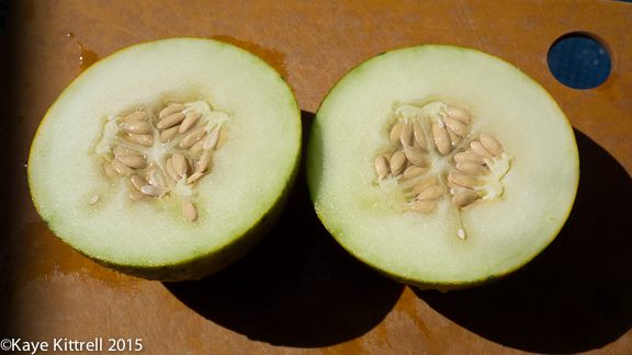 Cutting my losses with melons and beans - sliced melon