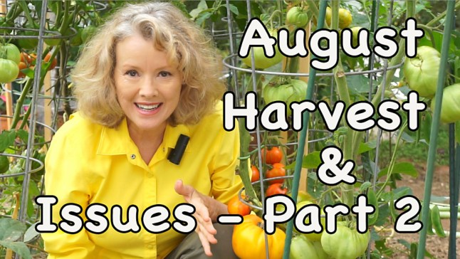 August Harvest & Issues - 2 Episodes! - Part 2