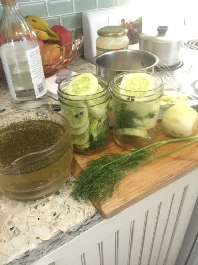 August Harvest & Issues - 2 Episodes - pickles