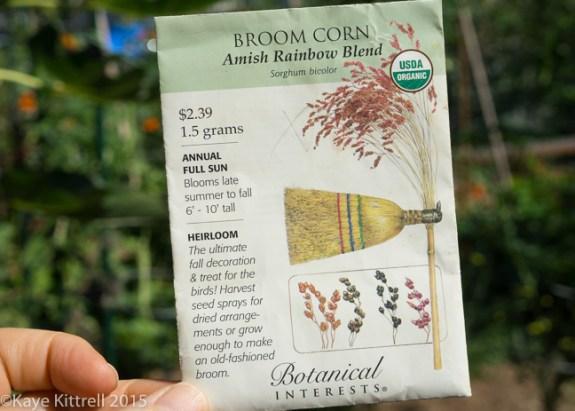Grow Broomcorn for Making Brooms & Fall Decor - Order Seed