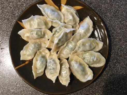 Phoenix Sizzled and I Vlogged! Dumpling Recipe!