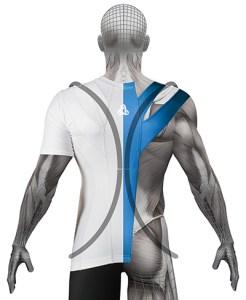 Alignmed BODY SHIRT LINES smaller
