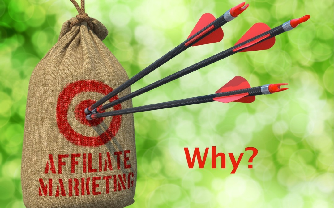 Why Start With Affiliate Marketing [IMM006]