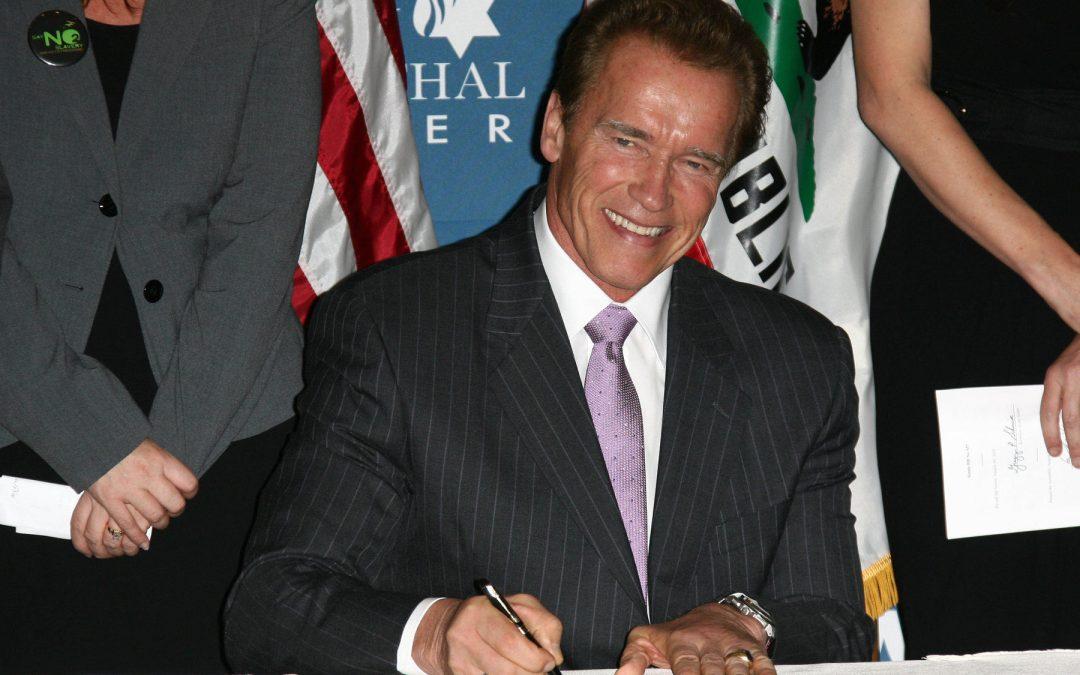 Arnold Schwarzenegger On Success In Internet Business [LNIM171]