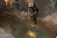 Carlsbad Cavern: a ranger fishes a coin from a pool. He said the water doesn't drain and the coin gradually dissolves and pollutes the water.