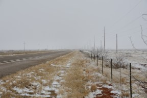 Rangeland in eastern New Mexico