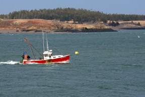 Working the waters around Lubec, Maine