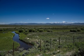 A wildlife restoration area in central Idaho, with the Bitterroot Mountains on the horizon.