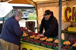 Local farmers set up roadside stands to sell fruit to tourists and others.