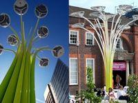 arbre-solaire