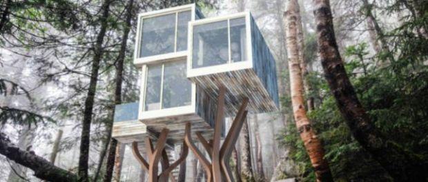 la maison de l arbre sans arbre la terre du futur. Black Bedroom Furniture Sets. Home Design Ideas