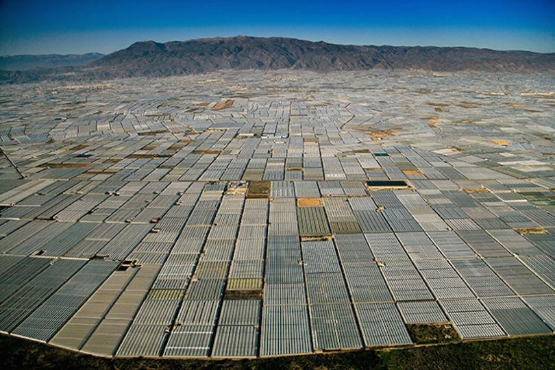 Serres couvrant le paysage près d'Almería, en Espagne