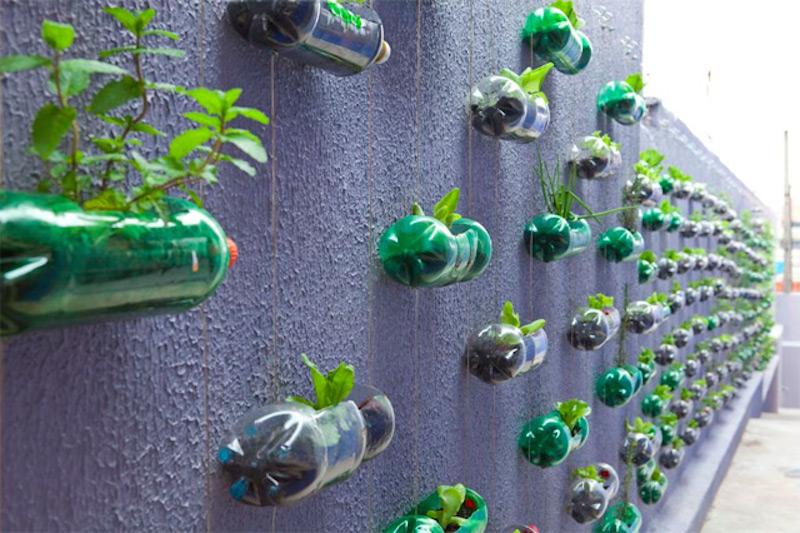 jardin-vertical-Brésil