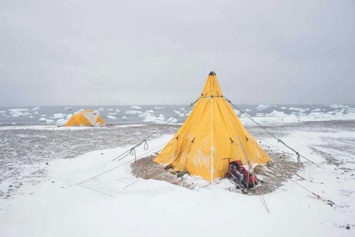 fossiles-antarctique-4