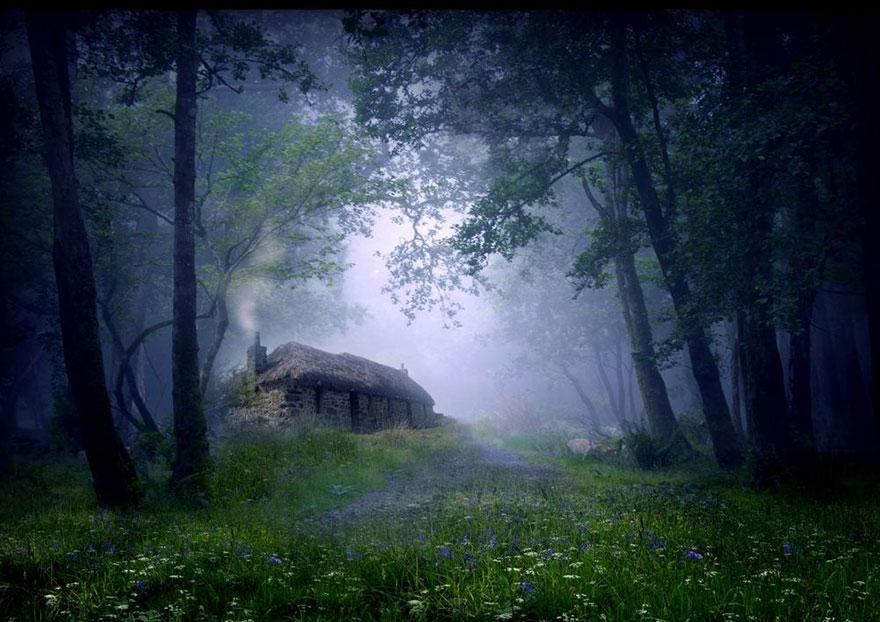 maison-cabane dans les bois Ecosse