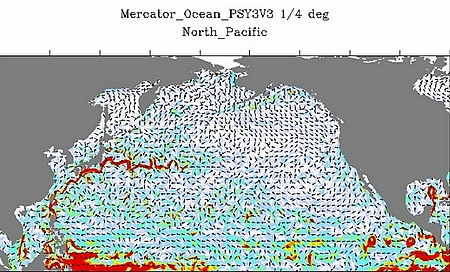 le courant océanique Kuroshio