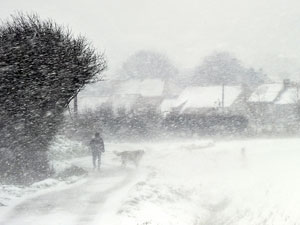 froid hiver 2012