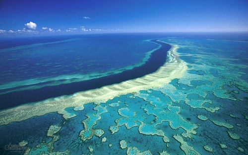 The-Great-Barrier