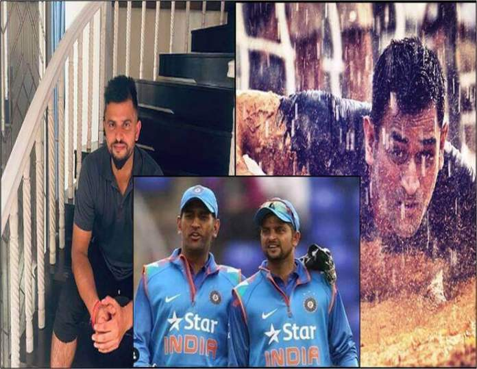 how-fans-react-on-m-s-dhoni-and-suresh-raina-retirement